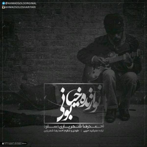 دانلود آهنگ نوازنده خیابونی احمد سلو