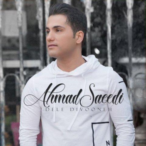 دانلود آهنگ دل دیوونه احمد سعیدی