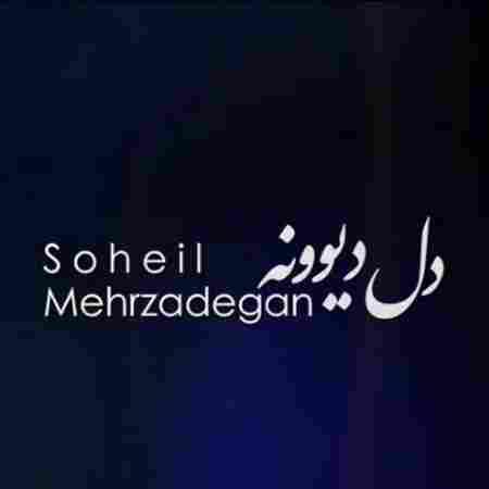 دانلود آهنگ دل دیوونه سهیل مهرزادگان