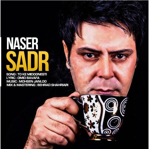 دانلود آهنگ تو که میدونستی ناصر صدر
